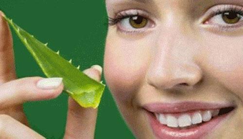 Cara Menghilangkan Flek Hitam Di Wajah Yang Membandel menggunakan Lidah Buaya