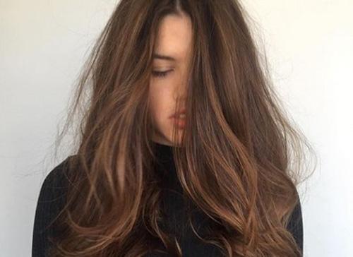 Mocha Brown Hair