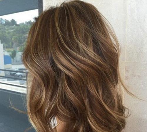 Woodys Brown Hair