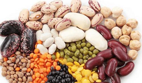 Kacang – Kacangan